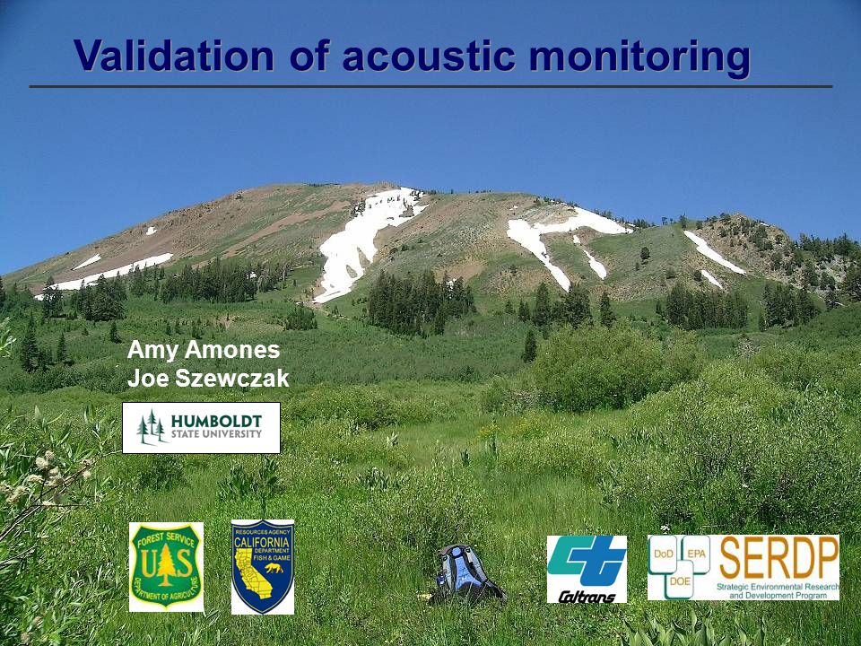 Validation of acoustic monitoring