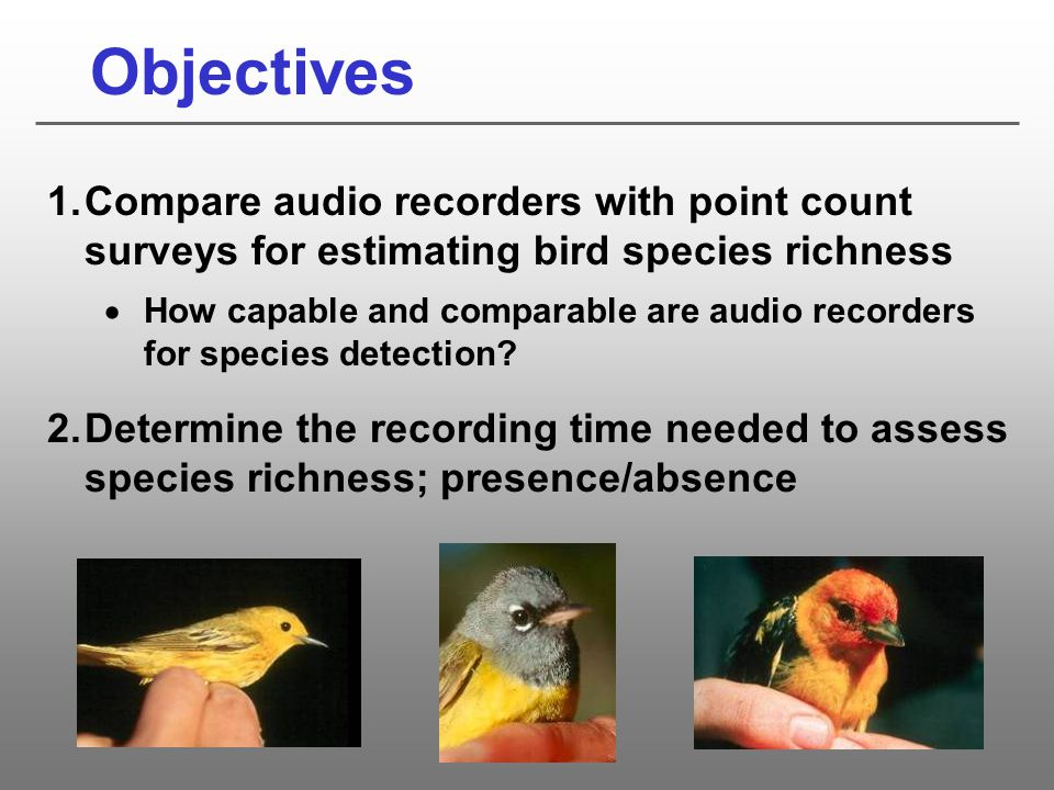 Objectives Compare audio recorders with point count surveys for estimating bird species richness.
