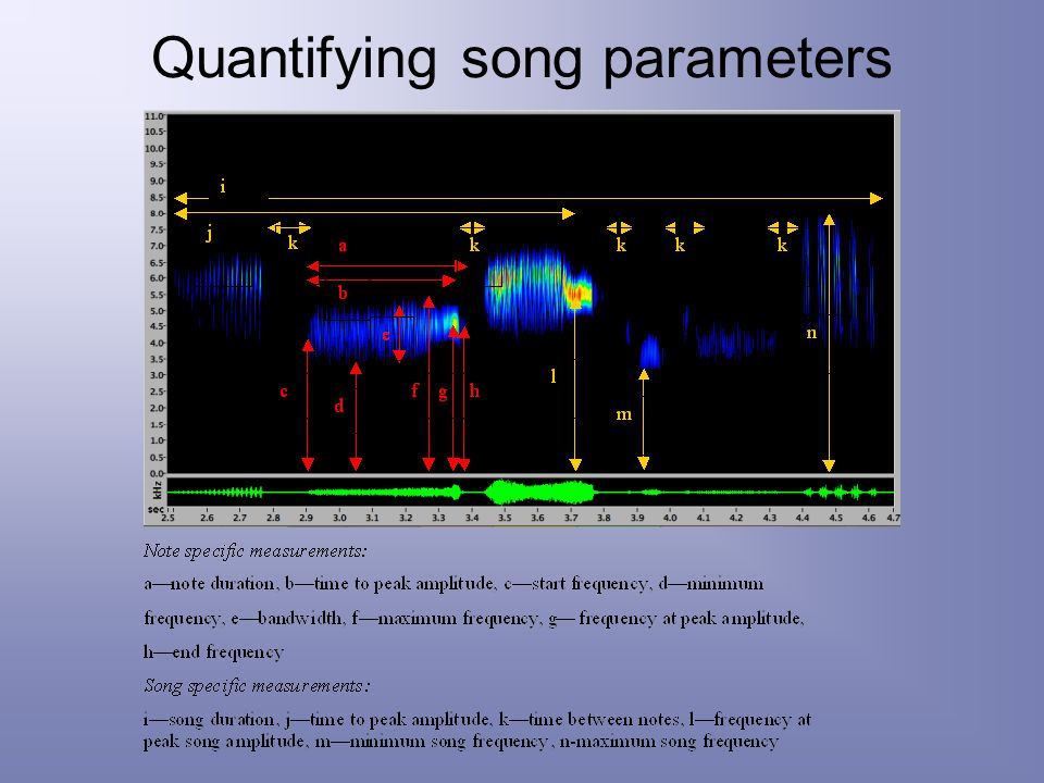 Quantifying song parameters