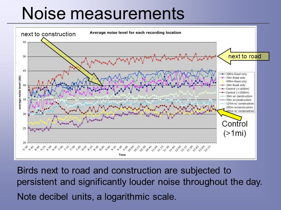 Noise measurements next to construction. next to road. Control (>1mi)