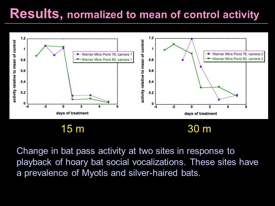 Results, normalized to mean of control activity