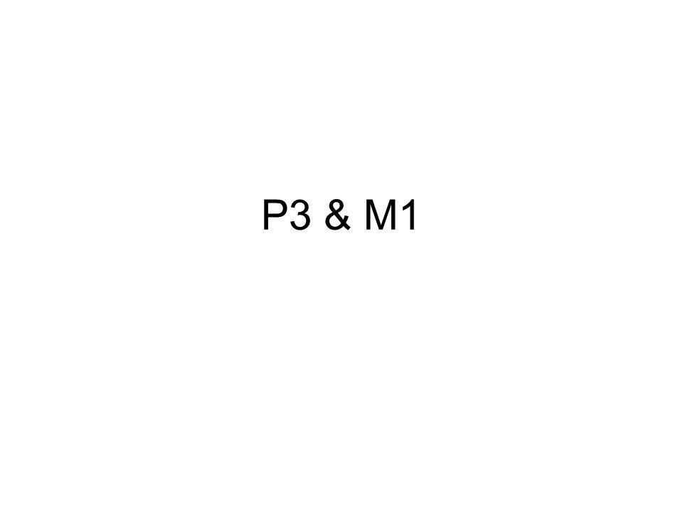 P3 & M1