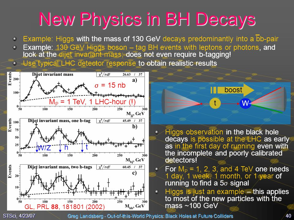 New Physics in BH Decays