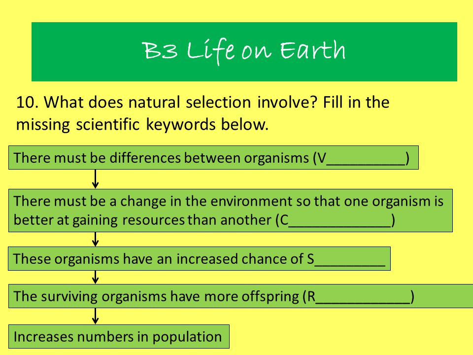 Natural Selection B3 Life on Earth