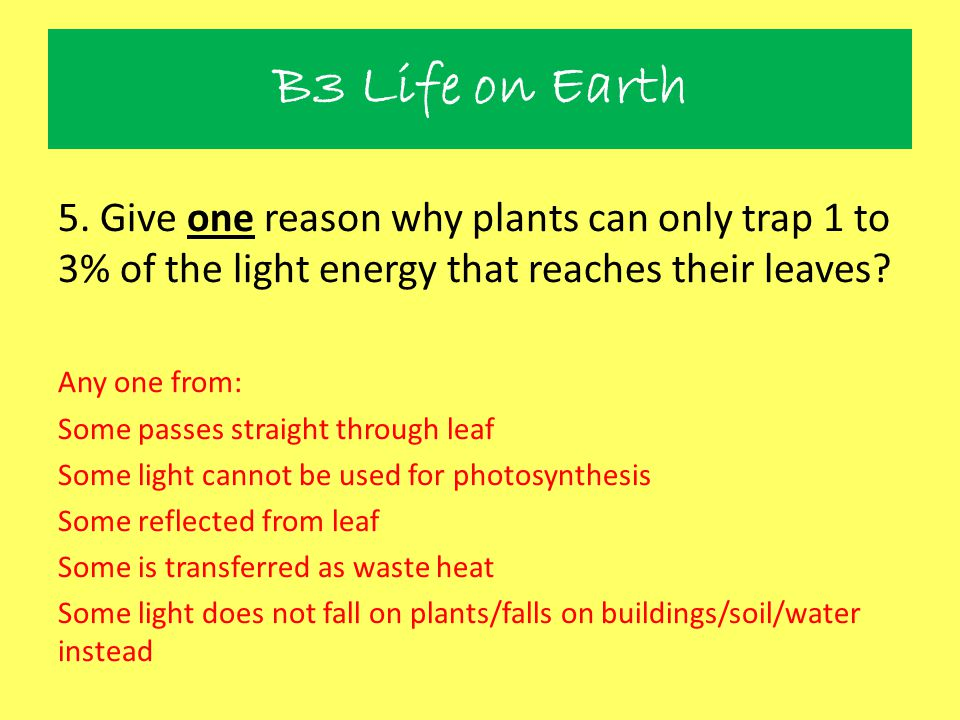 B3 Life on Earth 5. Give one reason why plants can only trap 1 to 3% of the light energy that reaches their leaves