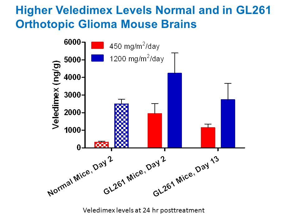 Higher Veledimex Levels Normal and in GL261 Orthotopic Glioma Mouse Brains