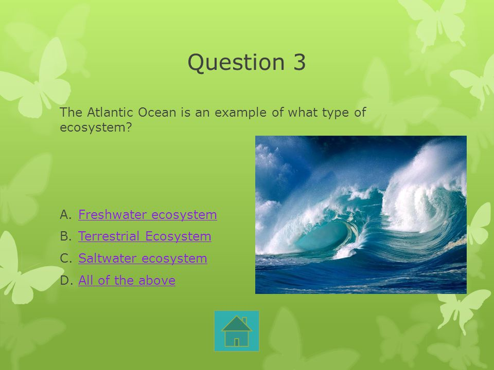 Question 3 The Atlantic Ocean is an example of what type of ecosystem