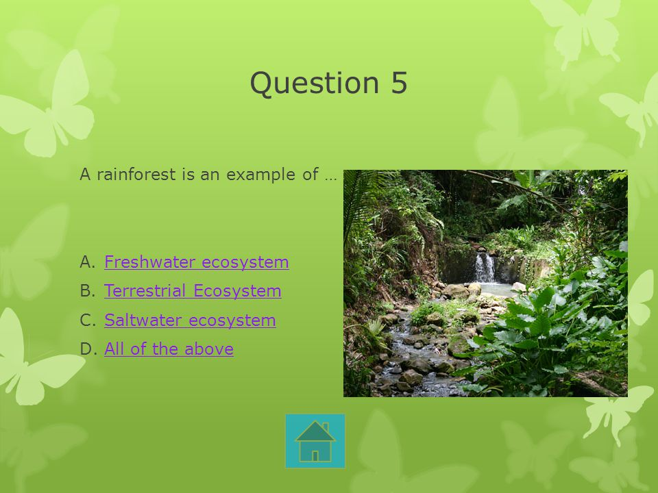 Question 5 A rainforest is an example of … Freshwater ecosystem