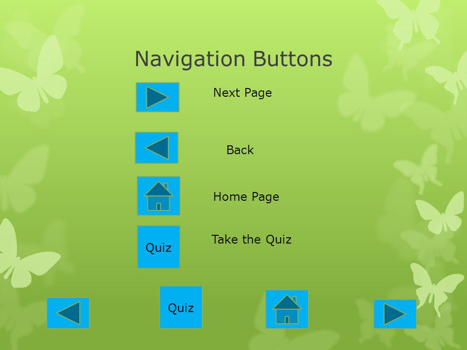 Navigation Buttons Next Page Back Home Page Quiz Take the Quiz Quiz