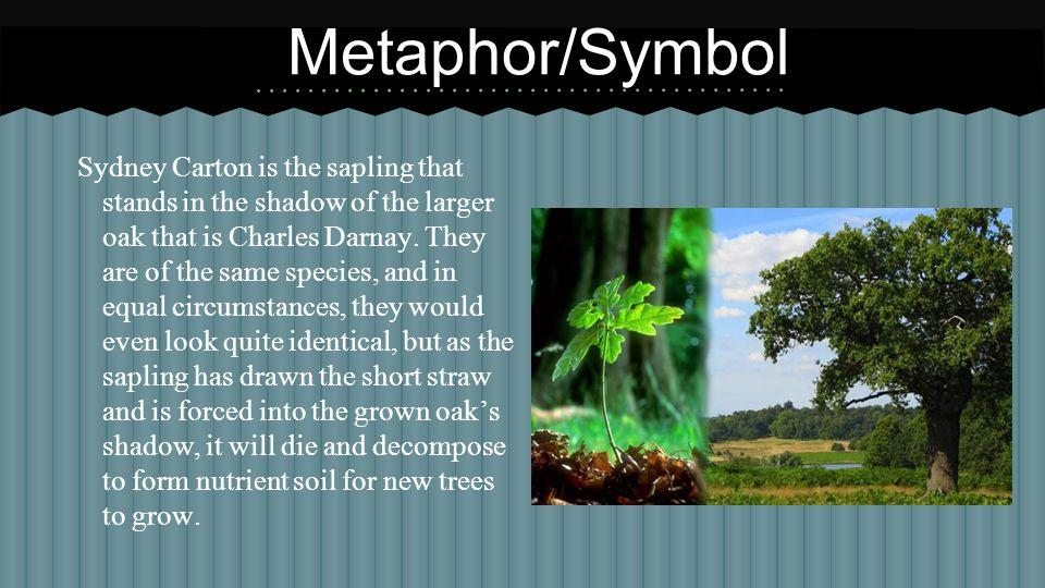 Metaphor/Symbol