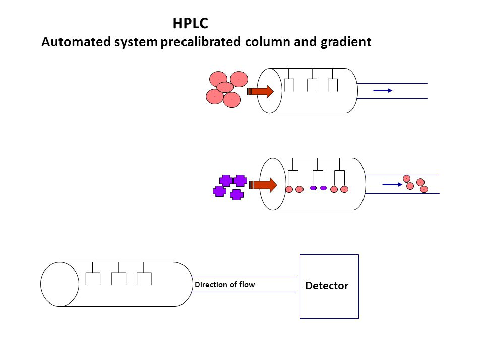 Automated system precalibrated column and gradient