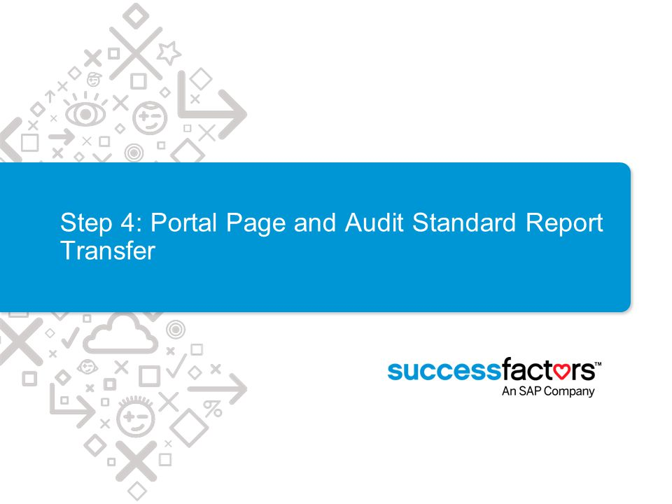 Step 4: Portal Page and Audit Standard Report Transfer