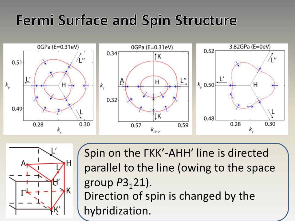 Fermi Surface and Spin Structure
