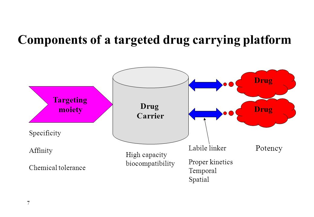 Components of a targeted drug carrying platform