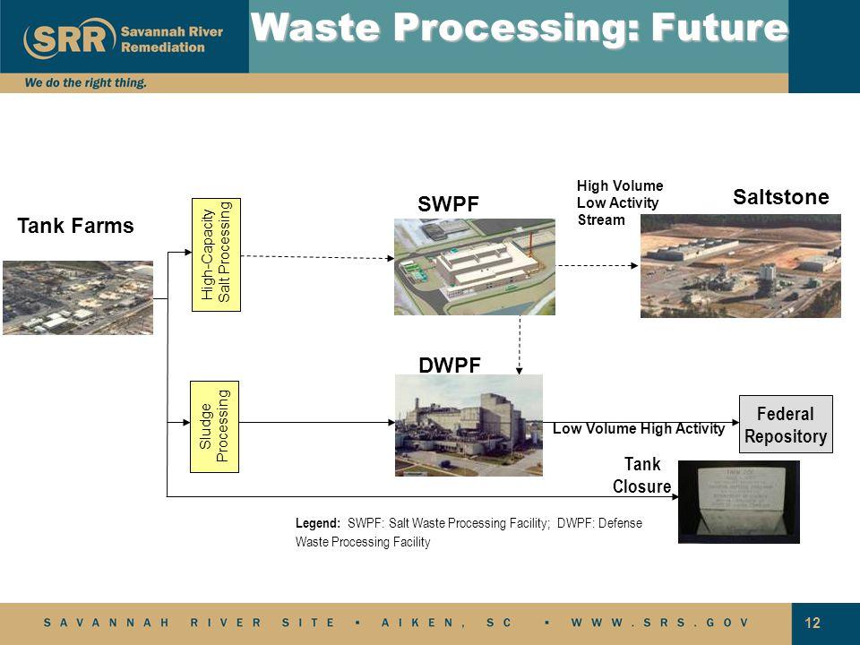 Waste Processing: Future