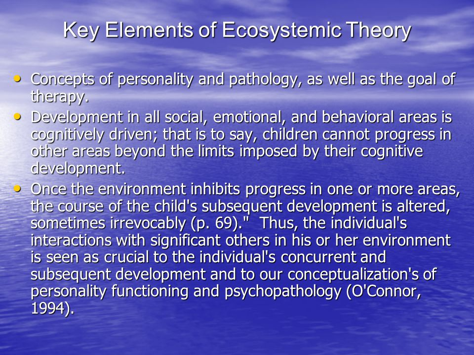 Key Elements of Ecosystemic Theory