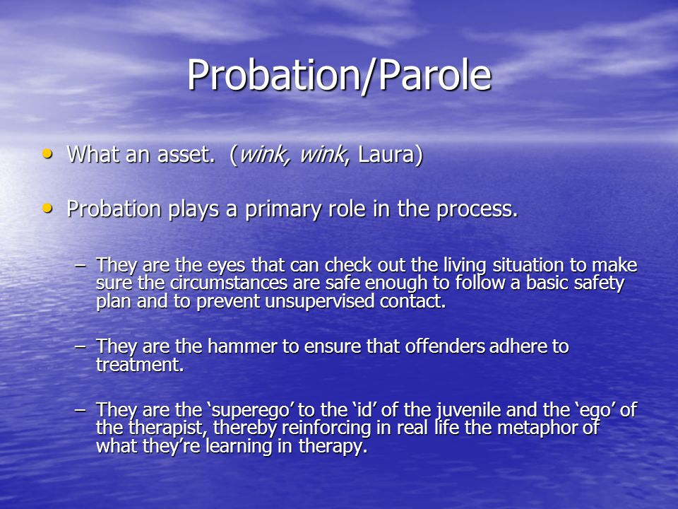 Probation/Parole What an asset. (wink, wink, Laura)