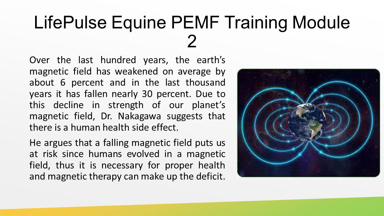 LifePulse Equine PEMF Training Module 2