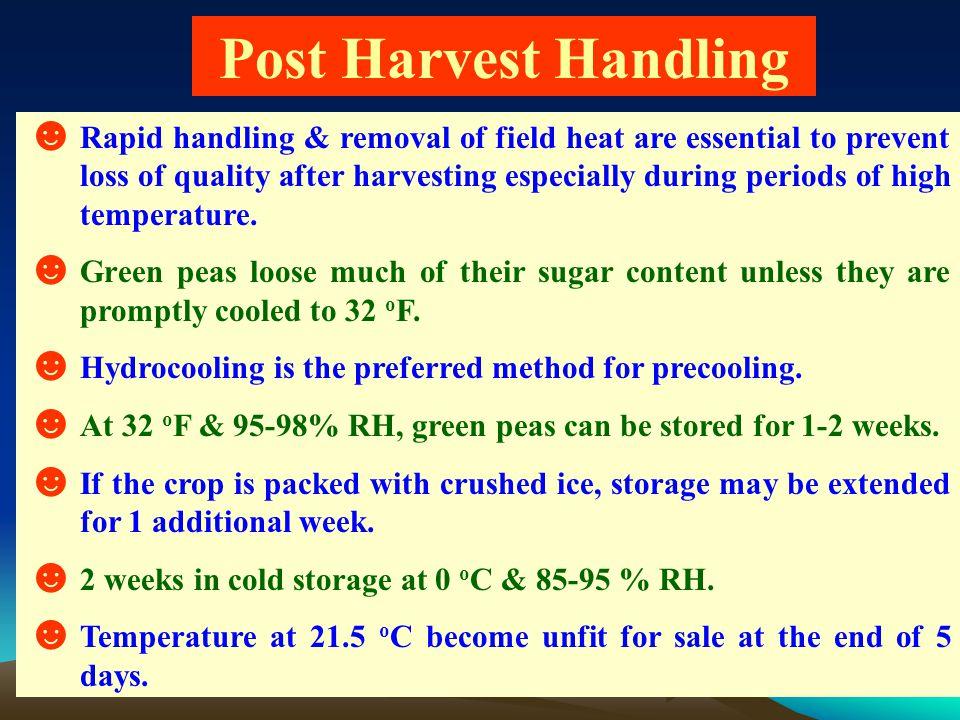 Post Harvest Handling