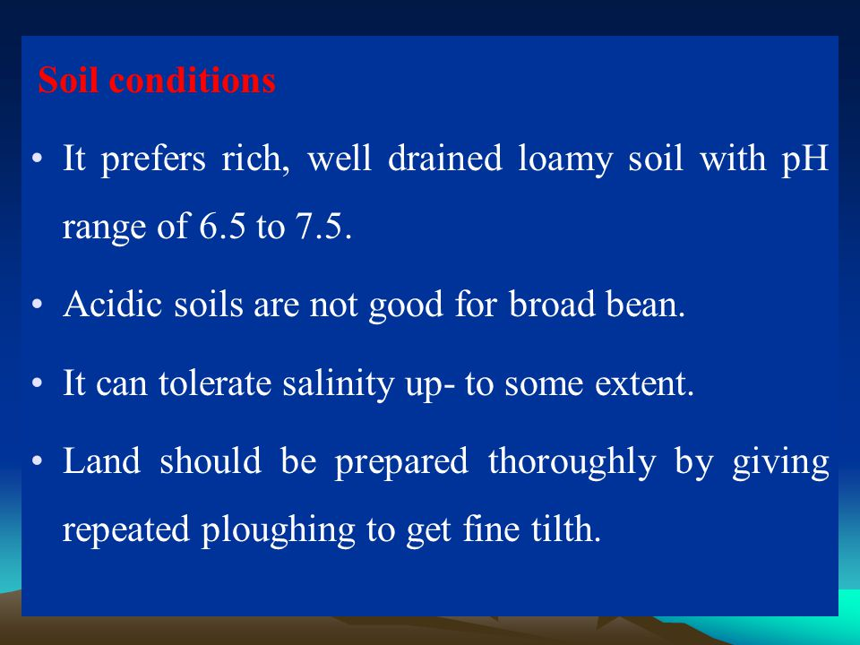 It prefers rich, well drained loamy soil with pH range of 6.5 to 7.5.