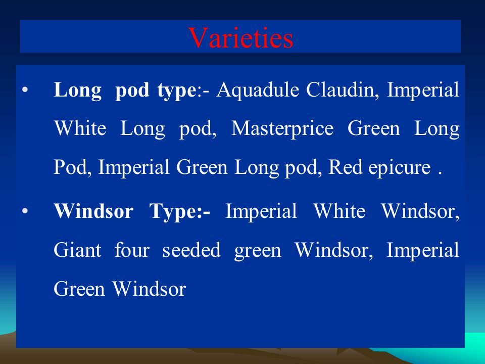 Varieties Long pod type:- Aquadule Claudin, Imperial White Long pod, Masterprice Green Long Pod, Imperial Green Long pod, Red epicure .