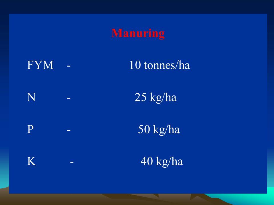 Manuring FYM - 10 tonnes/ha N - 25 kg/ha P - 50 kg/ha K - 40 kg/ha