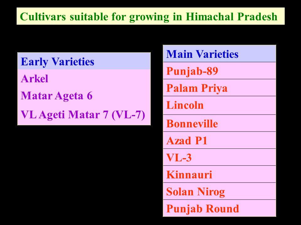 Cultivars suitable for growing in Himachal Pradesh
