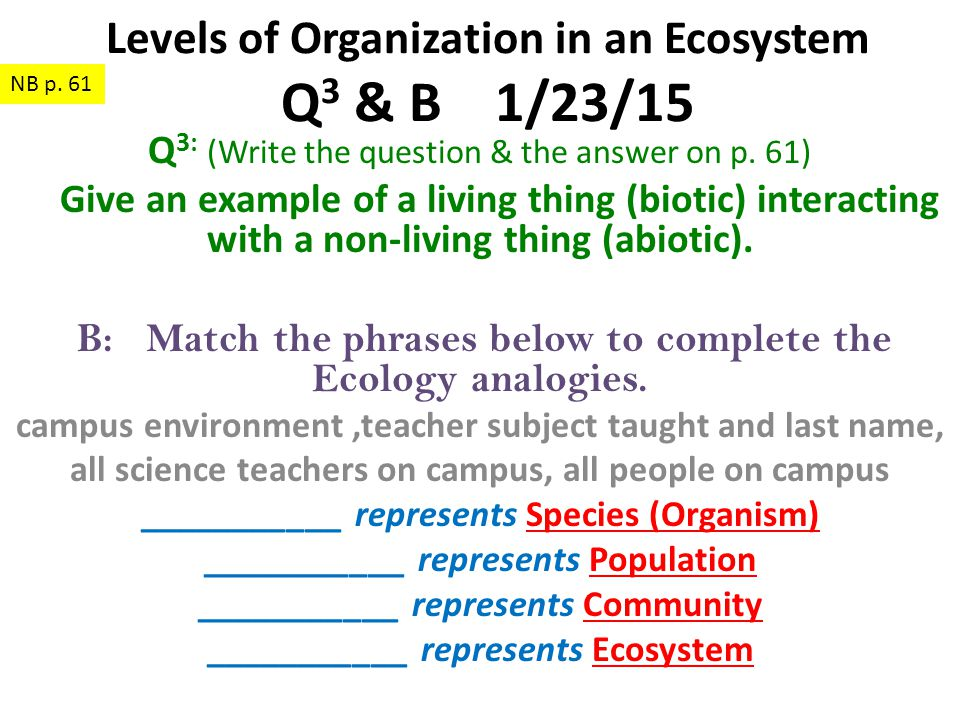 Levels of Organization in an Ecosystem Q3 & B 1/23/15