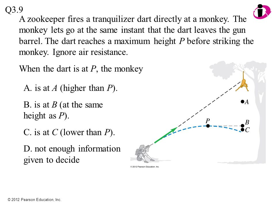 When the dart is at P, the monkey
