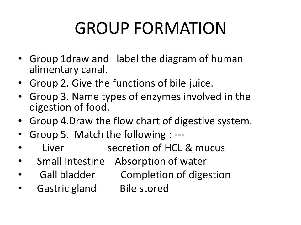 GROUP FORMATION Group 1draw and label the diagram of human alimentary canal. Group 2. Give the functions of bile juice.