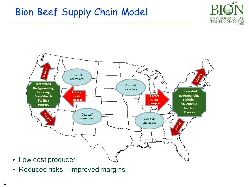 Bion Beef Supply Chain Model