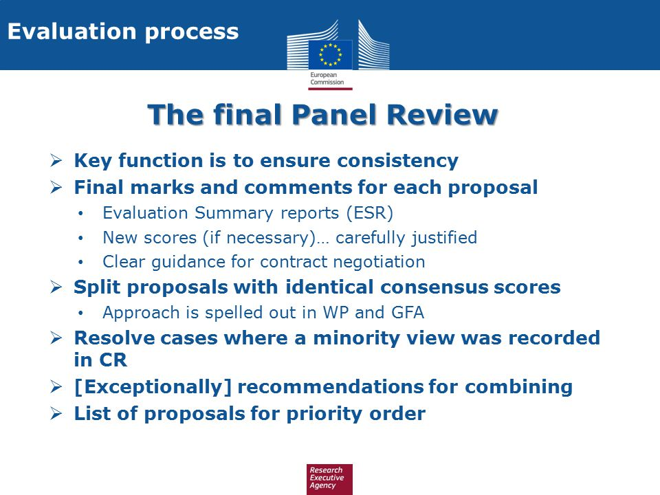 The final Panel Review Evaluation process