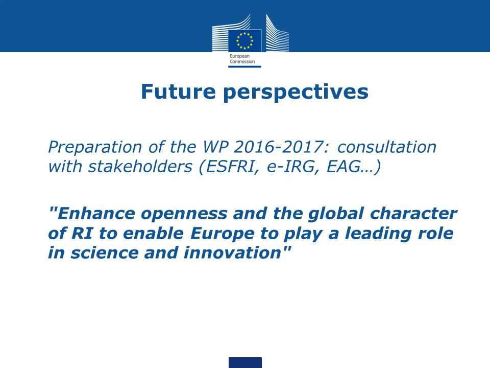 Future perspectives Preparation of the WP 2016-2017: consultation with stakeholders (ESFRI, e-IRG, EAG…)