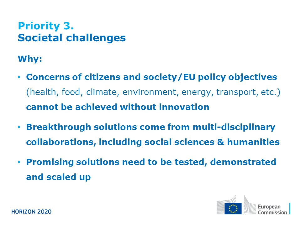 Priority 3. Societal challenges