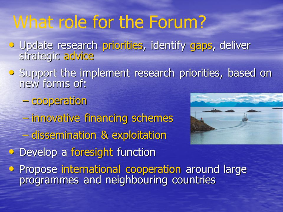 What role for the Forum Update research priorities, identify gaps, deliver strategic advice.