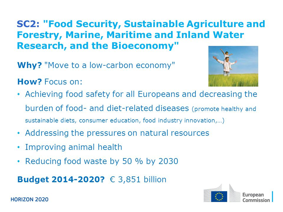 SC2: Food Security, Sustainable Agriculture and Forestry, Marine, Maritime and Inland Water Research, and the Bioeconomy