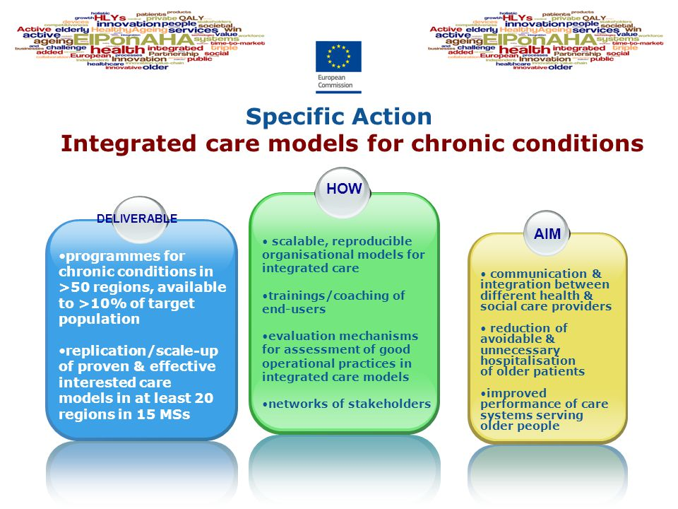 Specific Action Integrated care models for chronic conditions