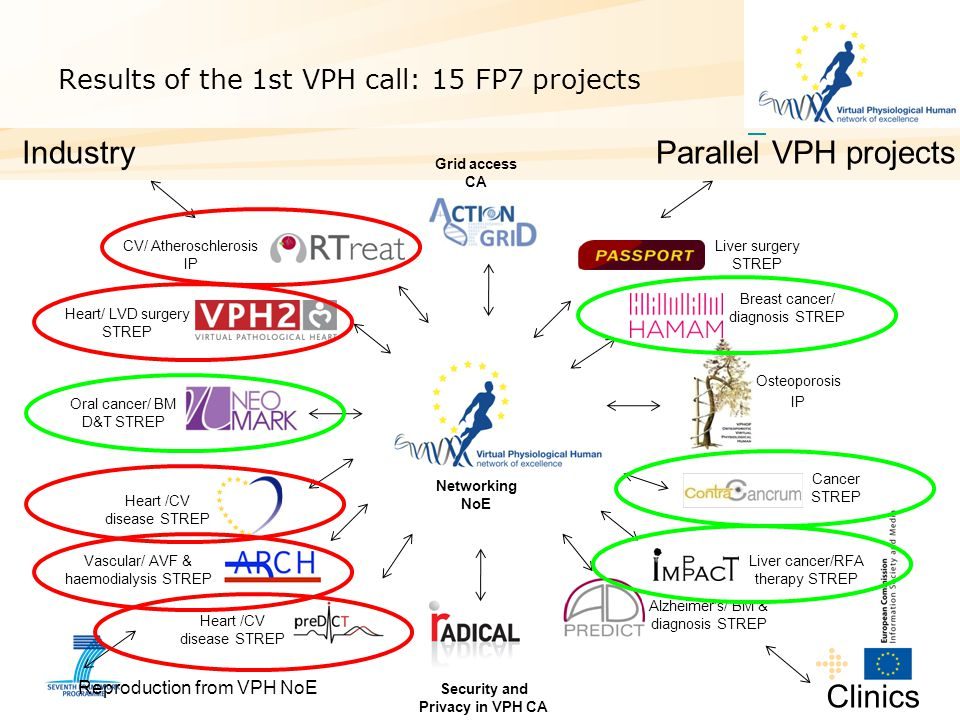 Results of the 1st VPH call: 15 FP7 projects