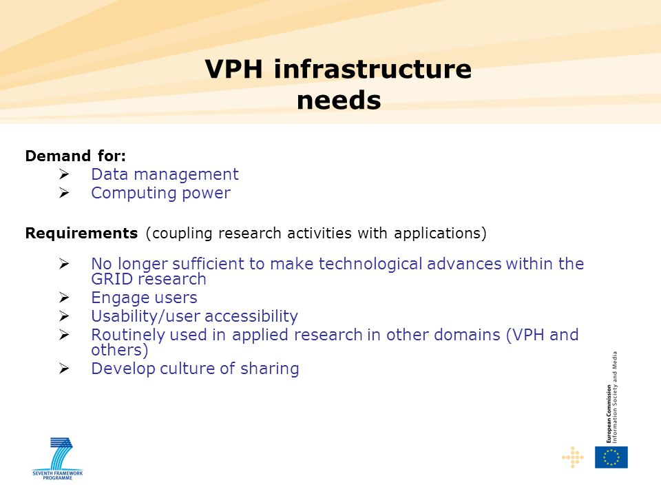 VPH infrastructure needs