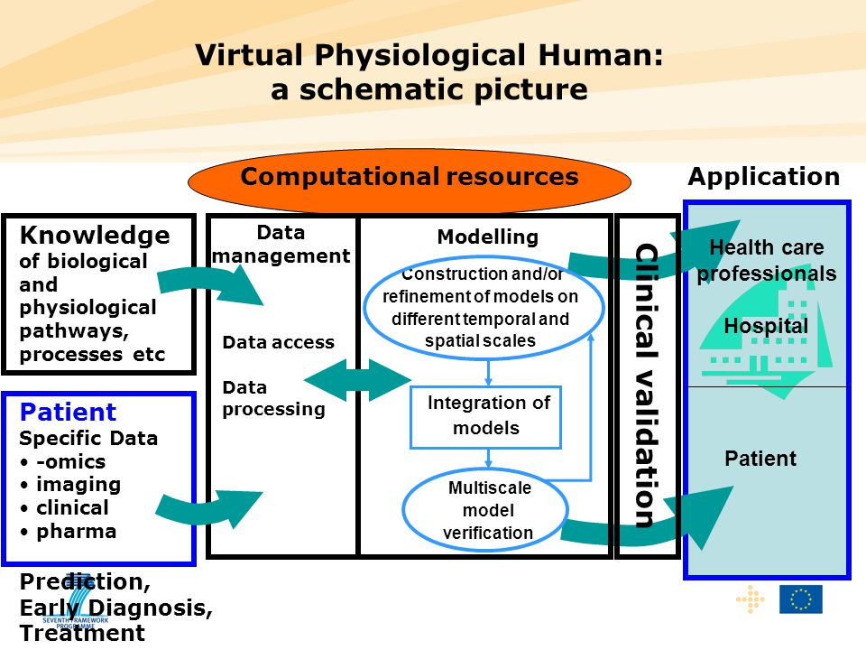 Virtual Physiological Human: a schematic picture