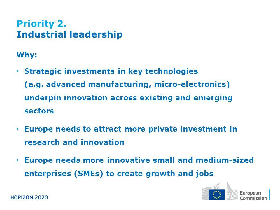 Priority 2. Industrial leadership