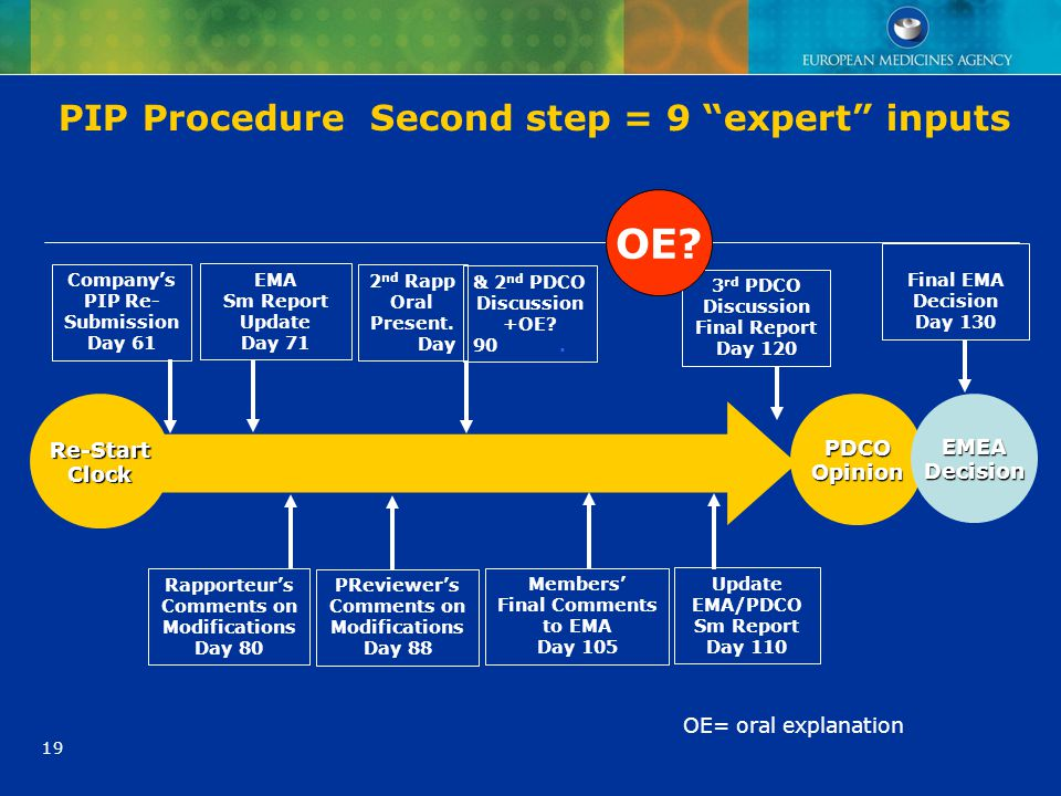 PIP Procedure Second step = 9 expert inputs