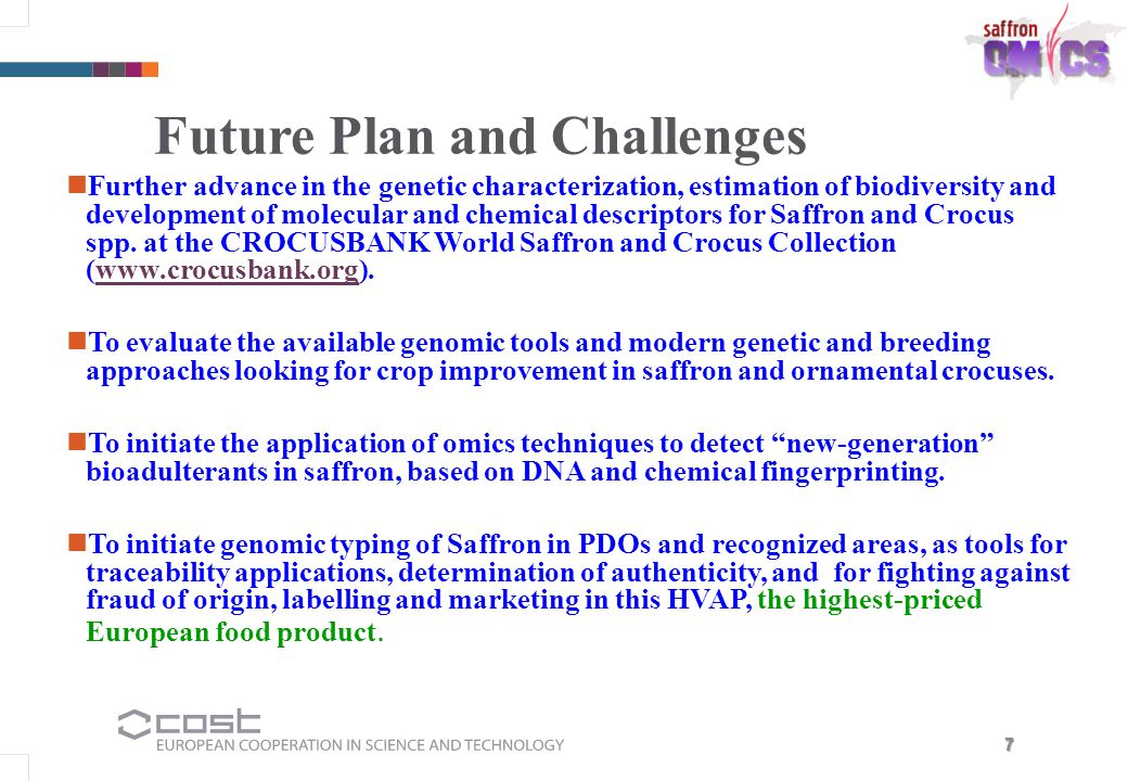 Future Plan and Challenges