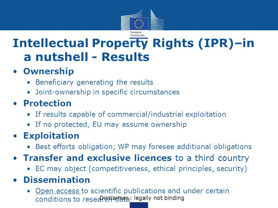 Intellectual Property Rights (IPR)–in a nutshell - Results