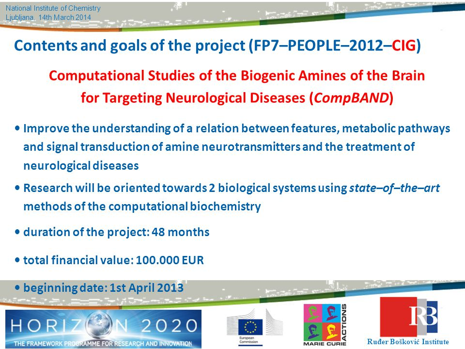 Contents and goals of the project (FP7–PEOPLE–2012–CIG)