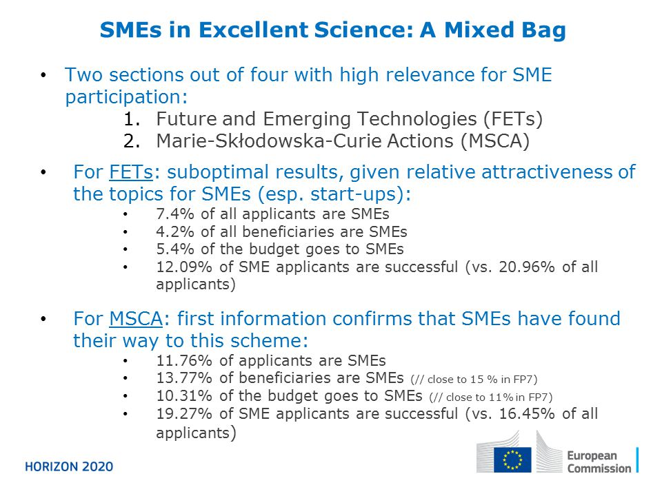 SMEs in Excellent Science: A Mixed Bag