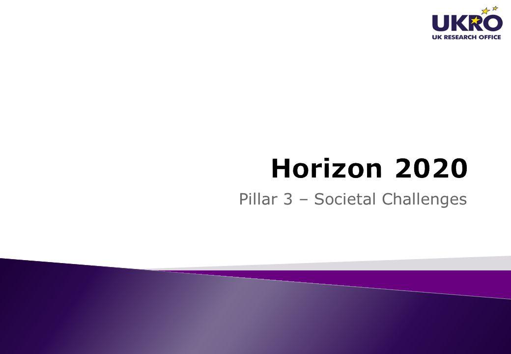 Pillar 3 – Societal Challenges