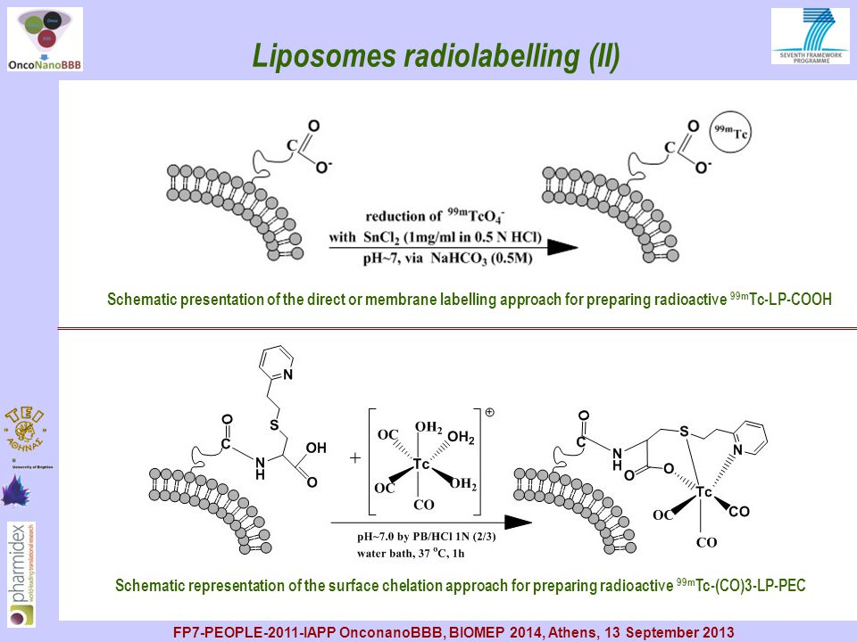 Liposomes radiolabelling (II)