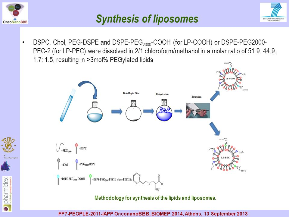 Synthesis of liposomes