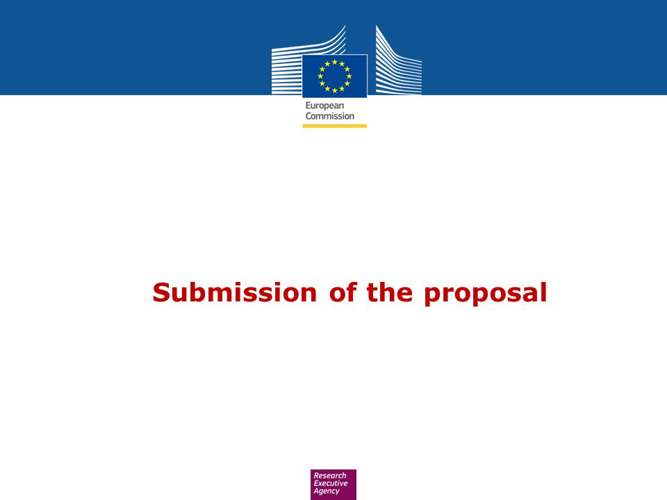 Submission of the proposal